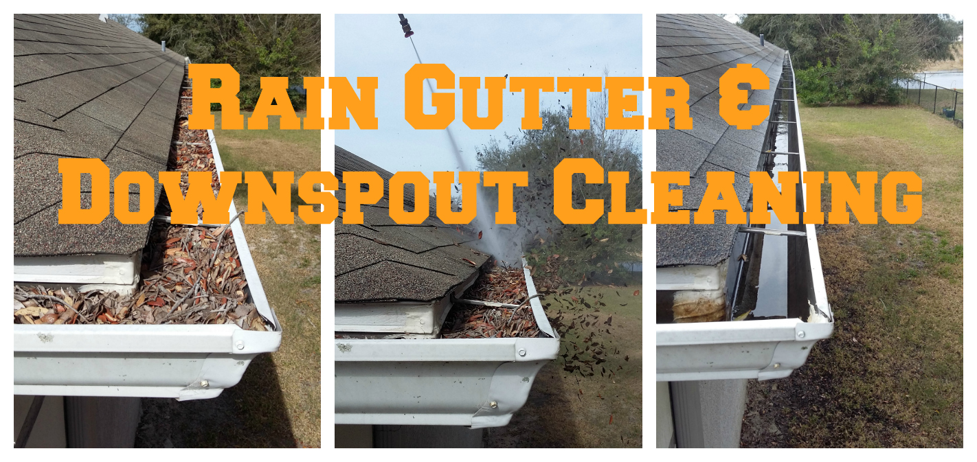 Rain Gutter & Downspout Cleaning