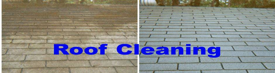 Non Pressure Safe Soft Roof Cleaning
